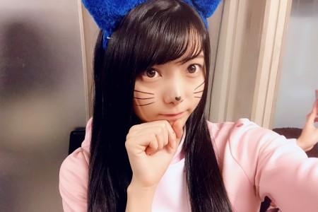 喵喵喵!2月22日是日本猫之日!来看看各种猫猫吧