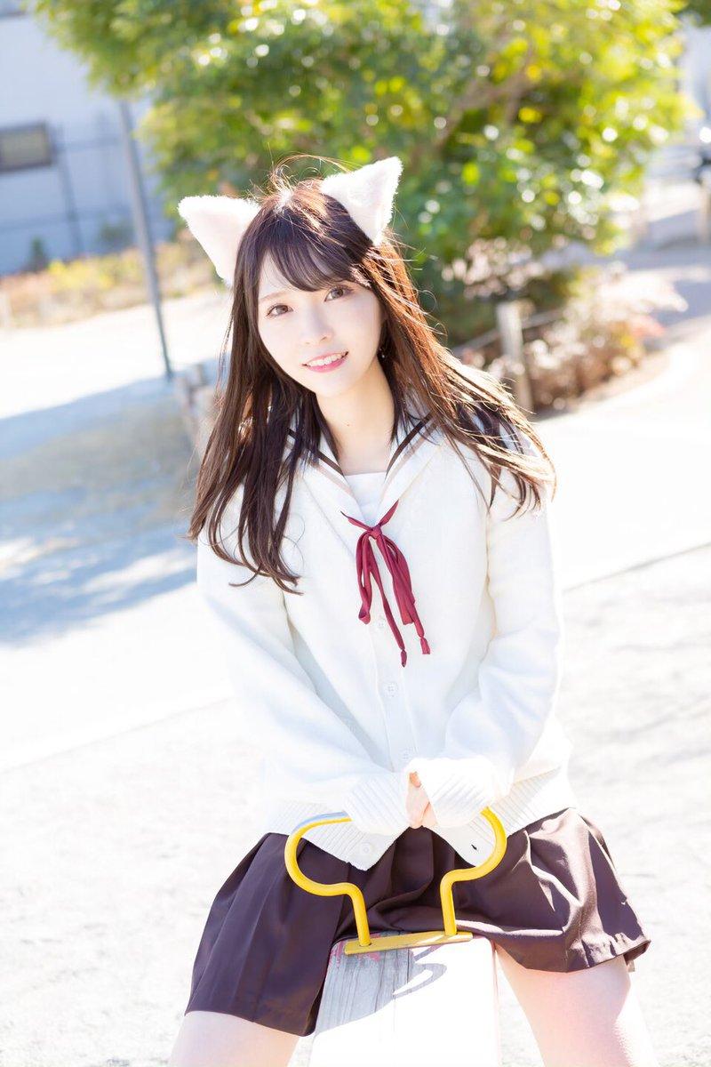喵喵喵!2月22日是日本猫之日!来看看各种猫猫吧 3